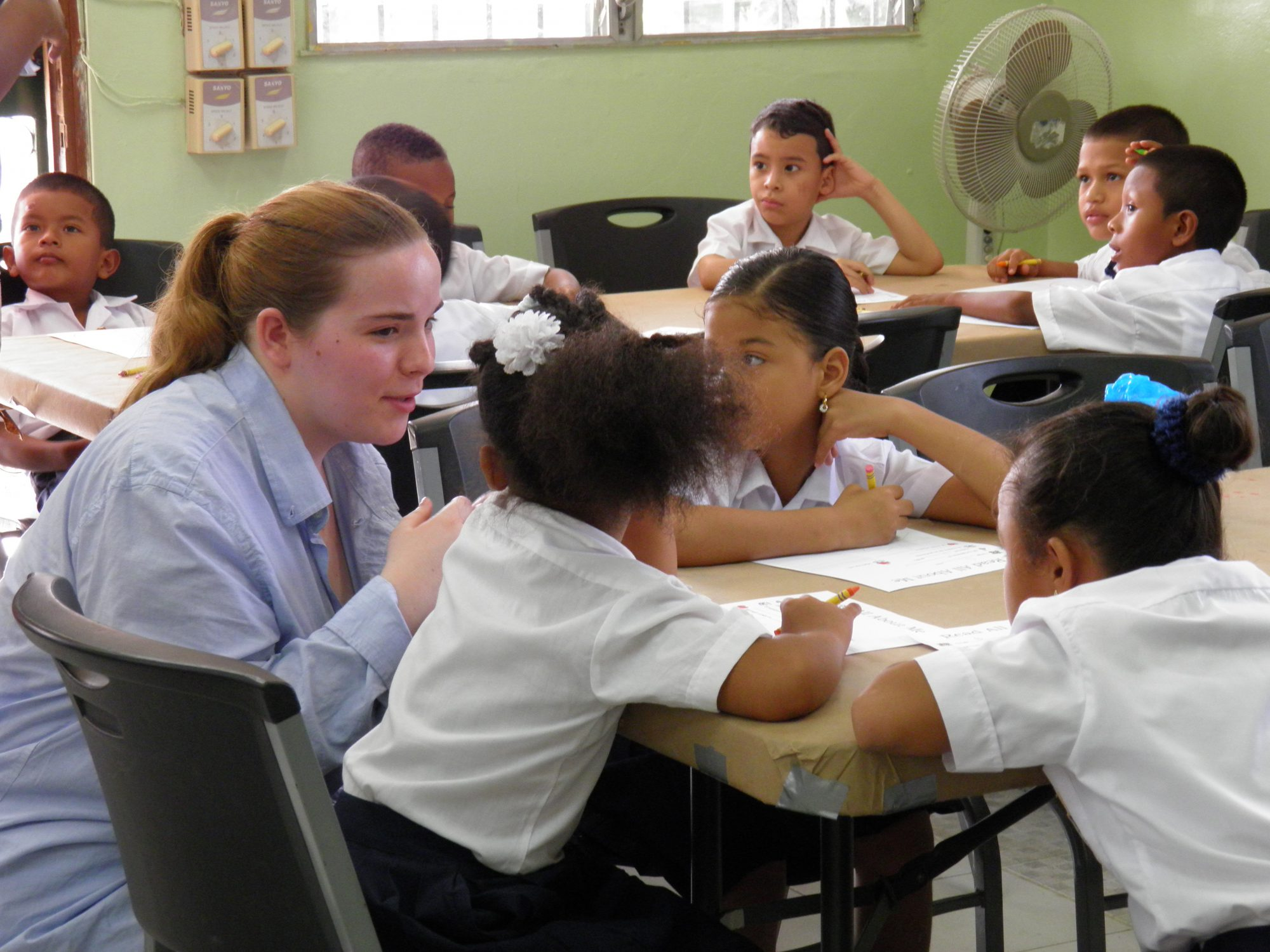 McMaster Scholar Teaching in Classroom